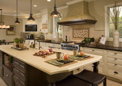 Orange Kitchen Remodel - Harmeyer1