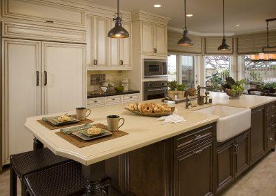 Orange Kitchen Remodel - Harmeyer2